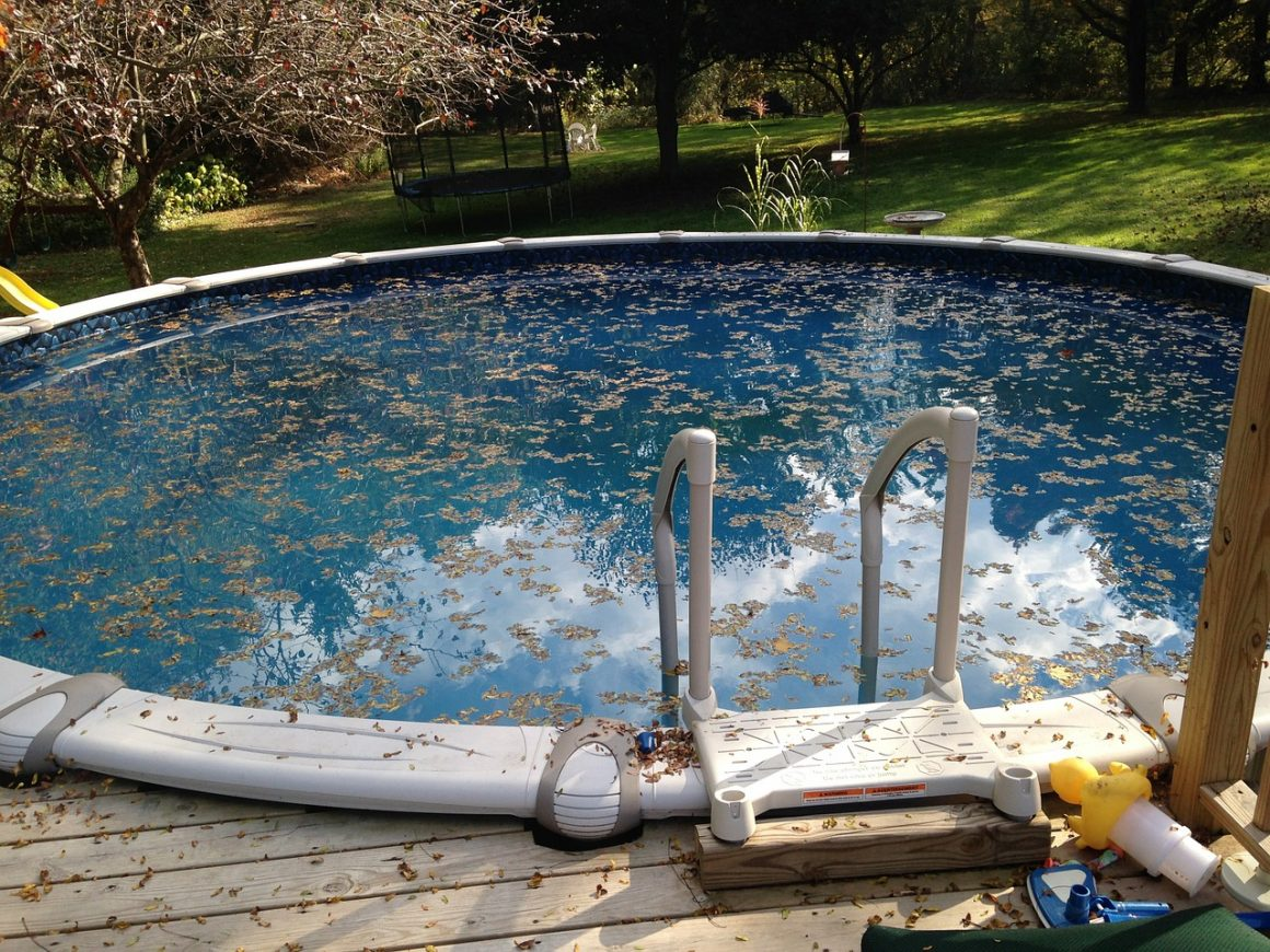How Do You Know that Algae is in Your Pool?