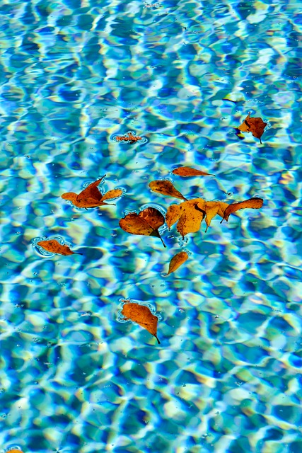 best pool cleaner for leaves